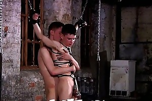 young homosexual acquires tied up and wazoo