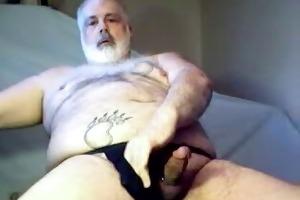 dad bear wanking it is